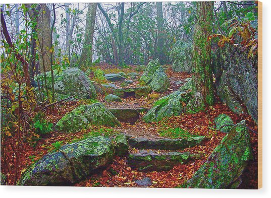 Appalachain Trail In The Clouds Wood Print