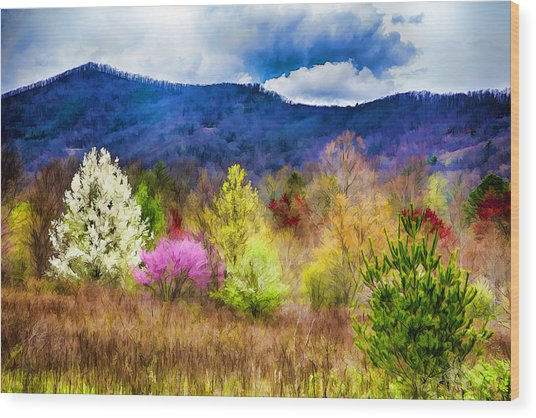 Appalachian Spring In The Holler Wood Print