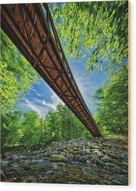 Wood Print featuring the photograph Appalachian Trail Foot Bridge by David A Lane