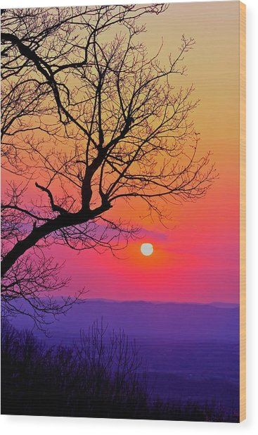 Appalcahian Sunset Tree Silhouette #2 Wood Print