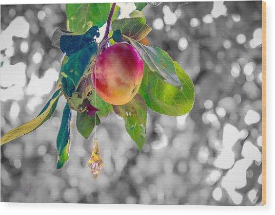 Apple And The Diamond Wood Print