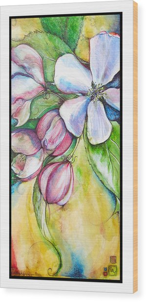 Apple Blossom Wood Print by Clare Catling