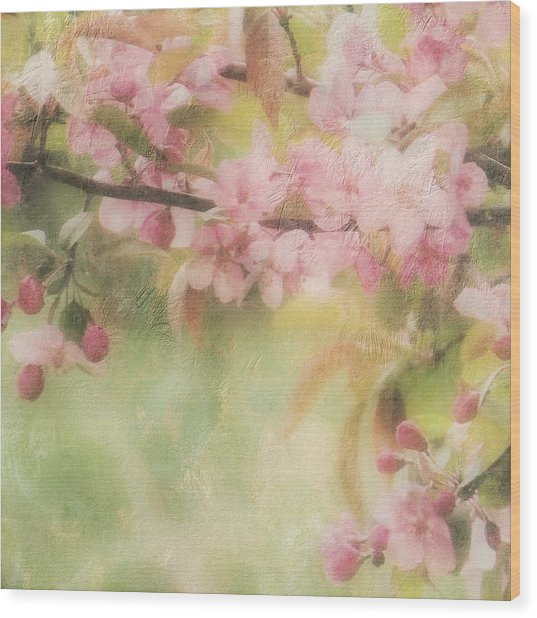 Apple Blossom Frost Wood Print