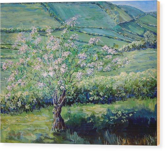 Apple Blossom In The Valley Wood Print by Wendy Head