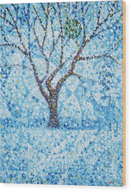 Apple Orchard / Winter Wood Print by Jim Rehlin