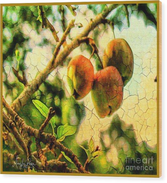Apple  Season Wood Print