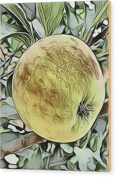 Apple Sketching Wood Print