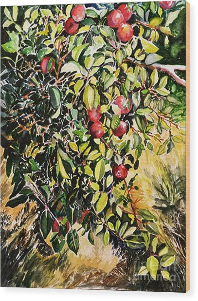 Wood Print featuring the painting Apple Tree by Priti Lathia