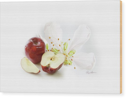 Apples And Blossom Wood Print