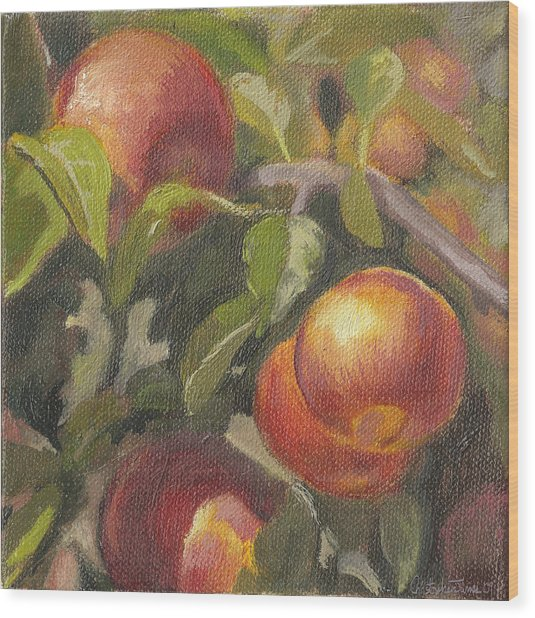 Apples In The Orchard Wood Print by Christopher James
