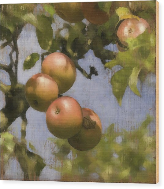 Apples On Wood Panel Wood Print