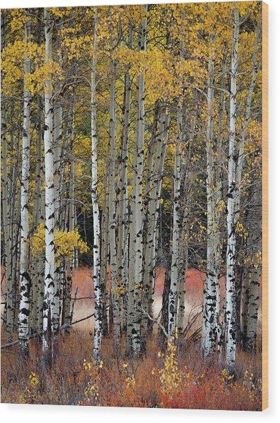 Appreciation Wood Print