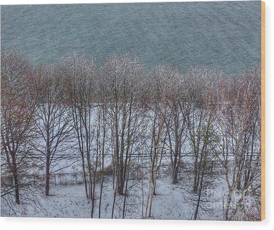 April Snow On Portland Trails Wood Print
