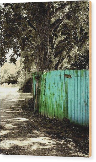 Aqua Fence Wood Print by Jill Tennison