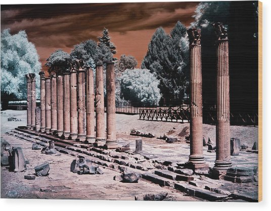 Wood Print featuring the photograph Aquileia, Roman Forum by Helga Novelli