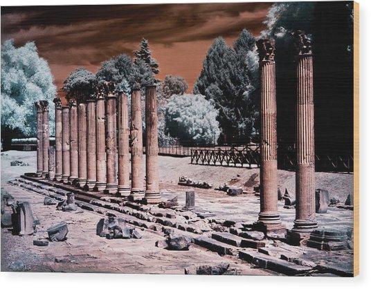 Aquileia, Roman Forum Wood Print