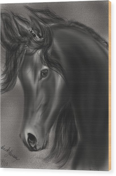 Arabian Horse  Wood Print