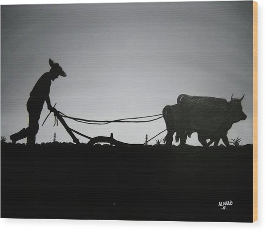 Arando Con Bueyes Wood Print