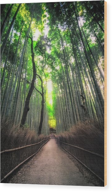 Arashiyama In Kyoto, Japan Wood Print