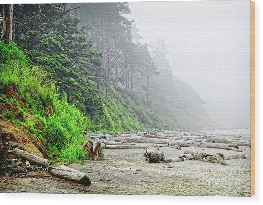 Arcadia Beach In Morning Fog Wood Print by Lincoln Rogers