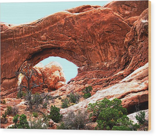 Arch Face Wood Print