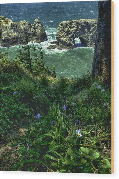 Arch Rock Delight Wood Print