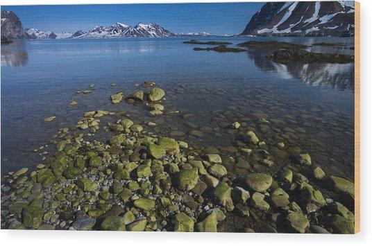 Arctic Canvas Wood Print by Biswarup Lahiri