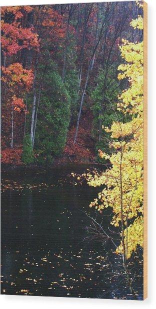 Ardent Wood Print