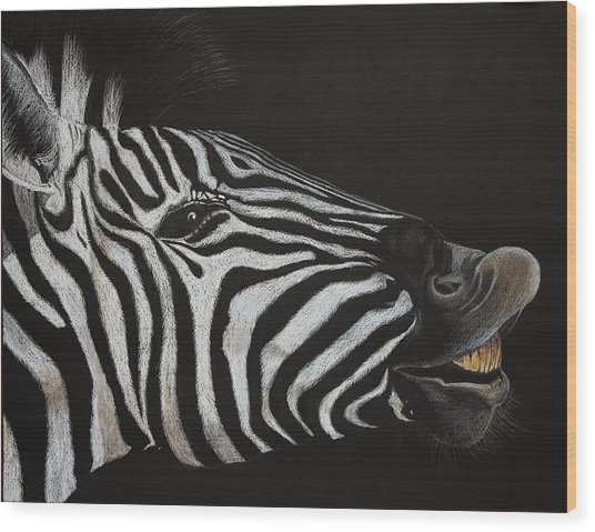 Are My Teeth Clean Yet Wood Print by Don MacCarthy