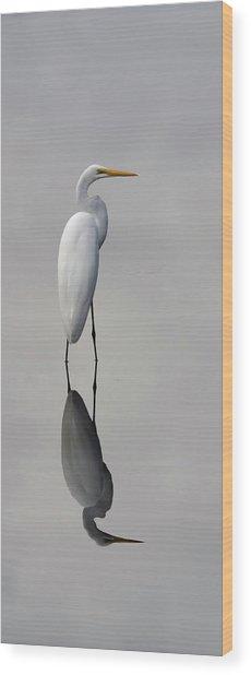Argent Mirror #2 Wood Print