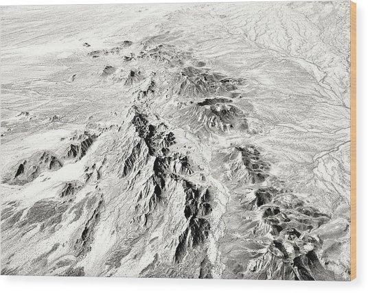 Arizona Desert In Black And White Wood Print