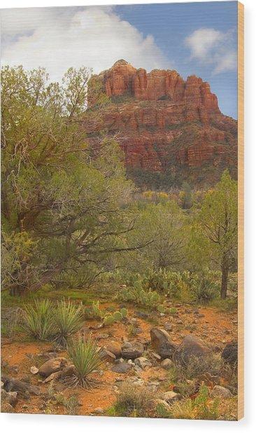 Arizona Outback 3 Wood Print