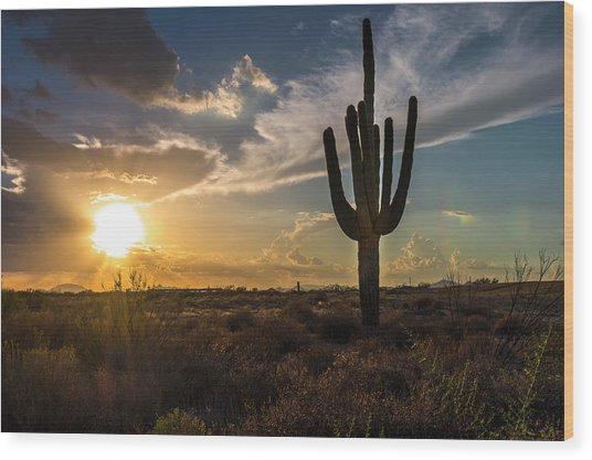 Arizona Vibes Wood Print