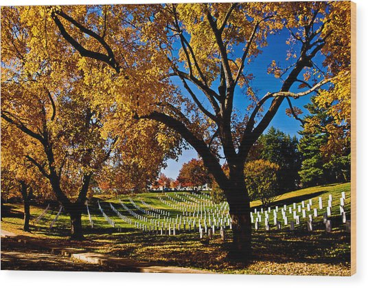Arlington Cemetery In The Fall Wood Print