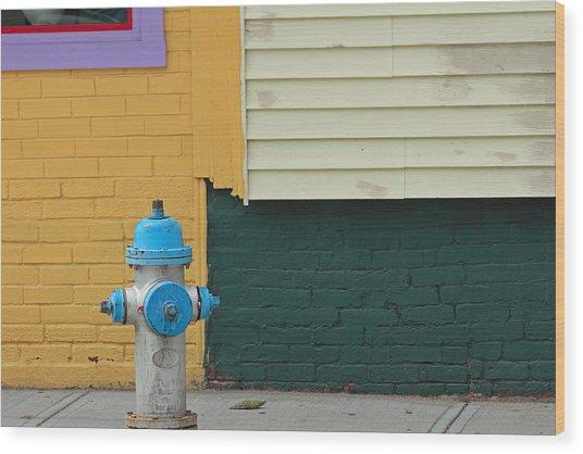 Arlington Hydrant Wood Print by Art Ferrier