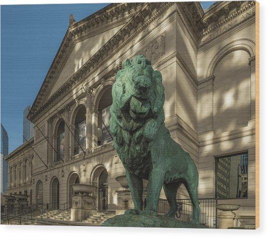 Art Institute Exterior Chicago Wood Print