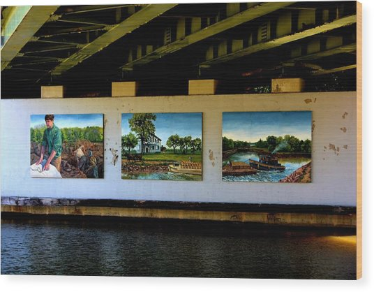Art Work On The Erie Canal Wood Print by Richard Jenkins
