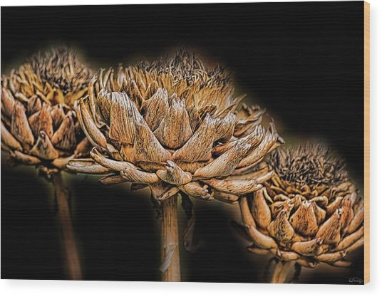 Wood Print featuring the photograph Artichokes Heads by Dee Browning