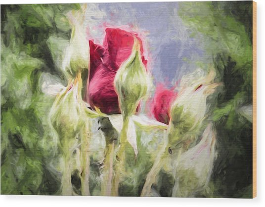 Wood Print featuring the photograph Artistic Rose And Buds by Leif Sohlman