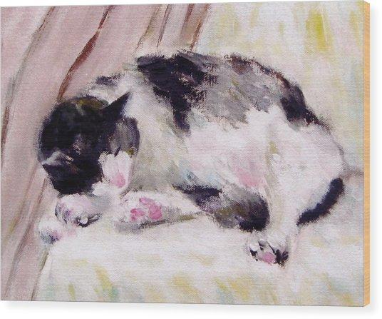 Artist's Cat Sleeping Wood Print