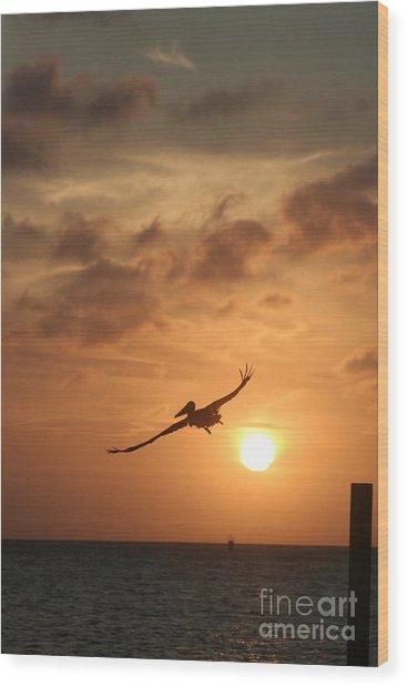 Aruba Pelican II Wood Print by Paula Deutz