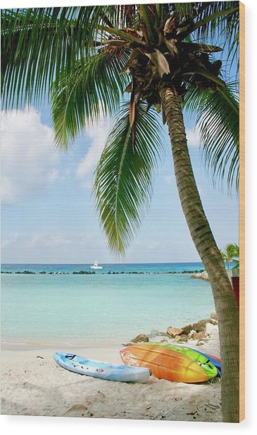Aruban Oasis Wood Print