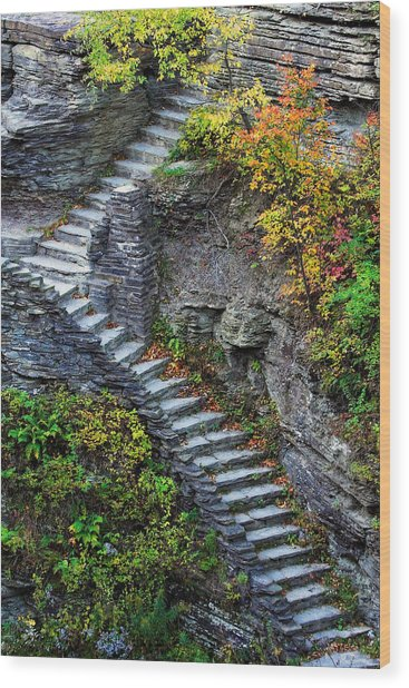 Ascent Wood Print