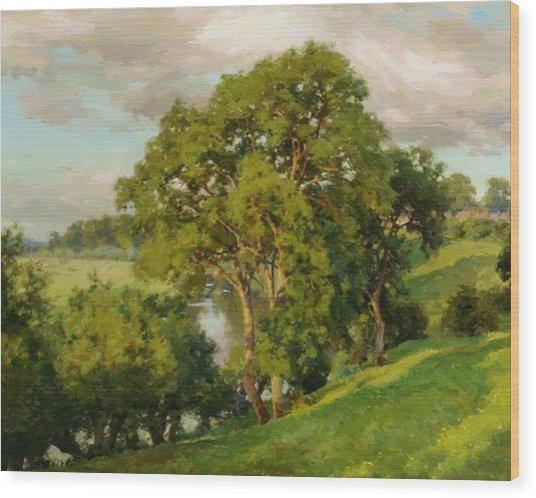 Ash Trees At Cropthorne Worcestershire Wood Print