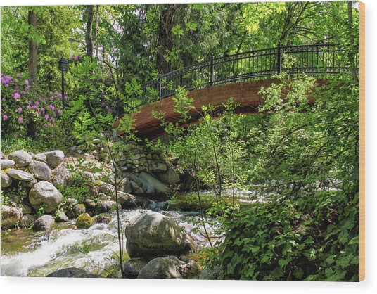 Ashland Creek Wood Print