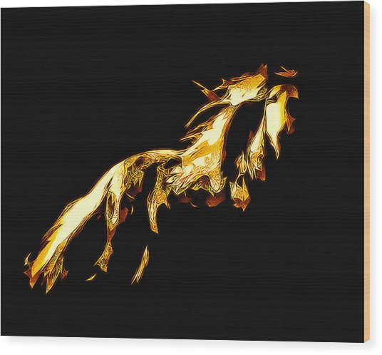 Asian Stallion Wood Print