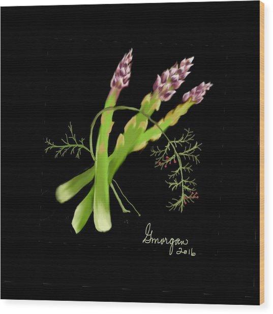 Asparagas  Wood Print