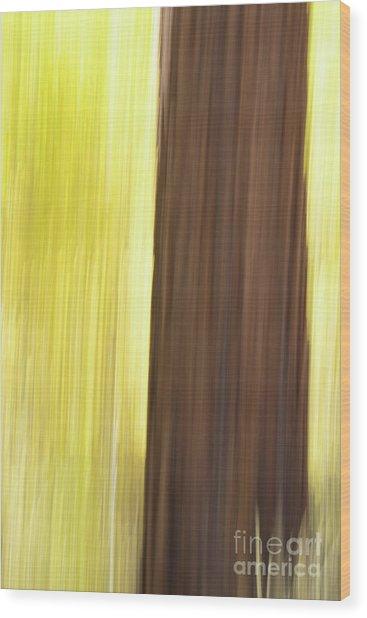 Aspen Blur #4 Wood Print