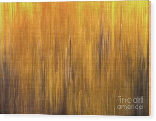 Aspen Blur #5 Wood Print