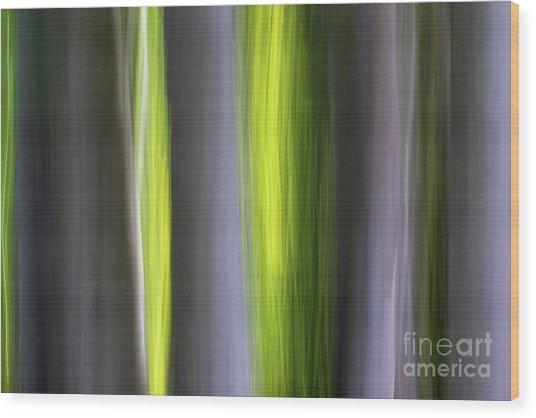 Aspen Blur #7 Wood Print